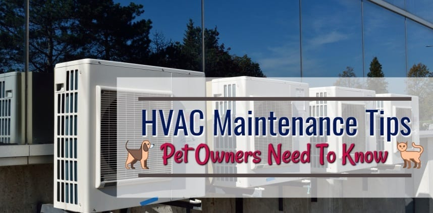 "Header image of the blog title ""HVAC Maintenance Tips Pet Owners Need To Know Header Image"" with a background of hvac"